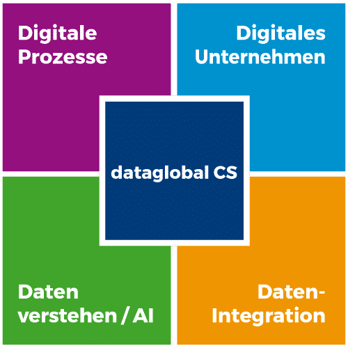 Software dataglobal CS
