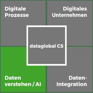 dataglobal-cs_Daten-verstehen