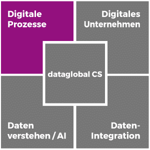 Digitale Prozesse mit der Software dataglobal CS