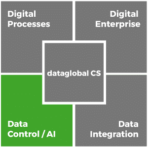 dataglobal-cs_data-control_en