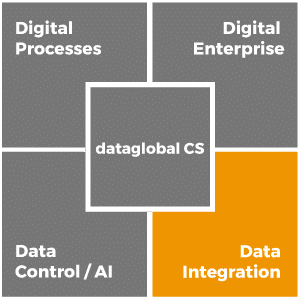 dataglobal-cs_data-integration_en