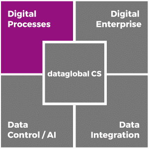 dataglobal-cs_digital-processes_en